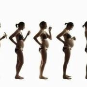 女生怀孕之后,都会有哪些变化?