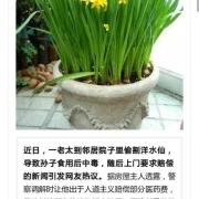 农村邻居偷了我家院子里种的水仙花当做韭菜做饺子,中毒上门索赔,该赔偿吗?