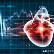 心率越慢,寿命就越长吗?心率越快,寿命越短吗?