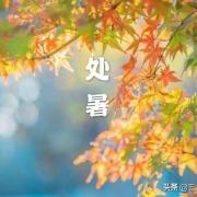 """农村俗话说""""处暑禾田连夜变"""":处暑的含义是什么?"""