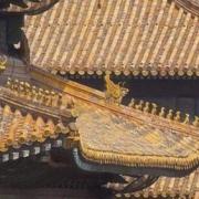 为何故宫的房顶从没有鸟粪,至今600多年还如此干净?