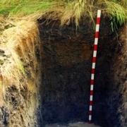 """非常好奇,石油的""""古代生物成油说"""",一个油田上亿吨,古代有那么多生物吗?"""