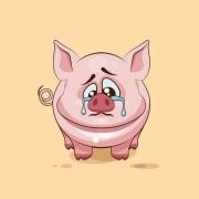 农民过年吃猪肉,猪肉能不能降价?