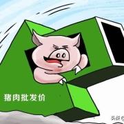 说猪肉价格能跌到4元一斤,是夸张说法,还是真的有科学依据?