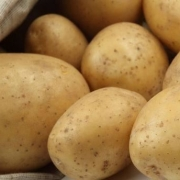 市面上的土豆越来越大,究竟和膨大剂有没有关系?你会吃吗?