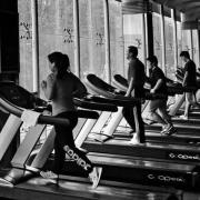 经常去健身房的女人都是什么人?