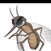 黑格尔说:存在即合理,那么蚊子存在的意义是什么?