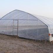建大棚养殖,怎么降温?