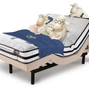 孩子出生以后,你们会分床分屋睡吗?