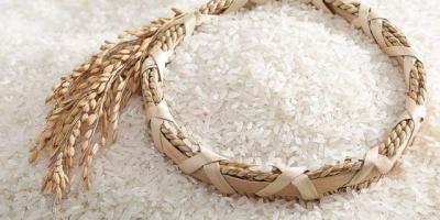 为什么北方人大多吃面食,而南方人大多吃米饭,哪个更适合你?