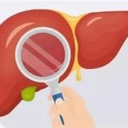 肝功能发生异常,身体也会跟着出现哪些异常表现?