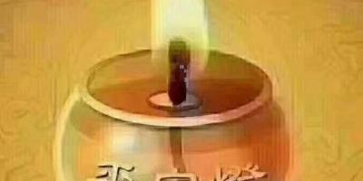 中医可不可以在网络上对国外华人进行远程治疗,望闻问切?