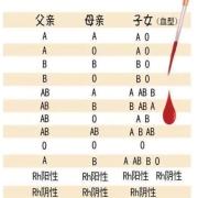 不去医院,怎么知道自己是什么血型?