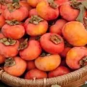 农村俗话说:男怕柿子,女怕梨!你知道有几层含义吗?
