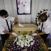 土葬和火葬,到底哪个是真环保?
