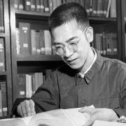 陈景润穷其一生而至死没能证明哥德巴赫猜想,那么他还有什么其他数学成果吗?