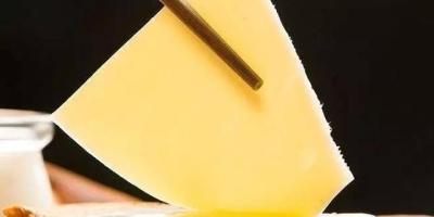 哪个牌子的奶酪最好吃?