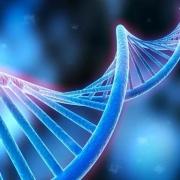转基因食物的危害究竟有多大?