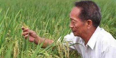 大家认为近二十年对中国影响最大最伟大的中国人都有谁?