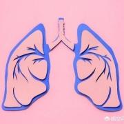 肺好不好,从什么地方能看出来?
