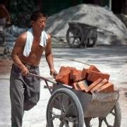 如果没有了农民工,城市会变成什么样子?