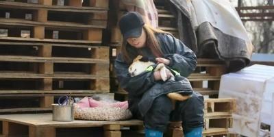 怎么看待女子卖掉房子在郑州救助流浪狗?