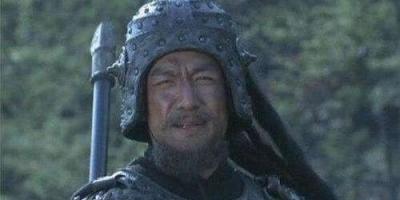 三国后期,打遍蜀国无敌手的魏国的武将应该是谁?