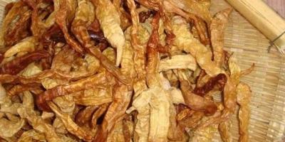 """湖南特色农产品""""白辣椒"""",是用青椒做出来的吗?青椒怎么变白的呢?"""