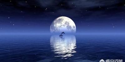 登上月球的人都发现了什么惊人的东西?