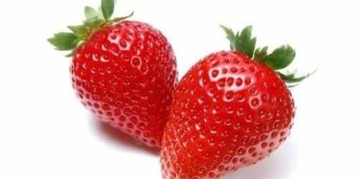 哪个季节的草莓最适合小孩吃?