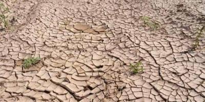 以色列是如何在茫茫沙漠中寻找到水源的?你怎么看?