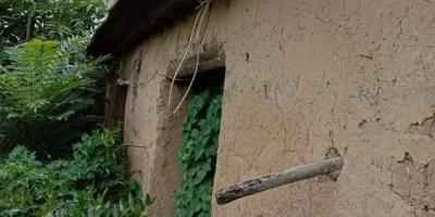 你记忆中的农村是什么样的?