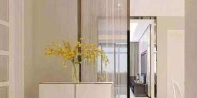 进门左面是客厅,右面是餐厅,应该怎么设计玄关?怎么隔断餐厅和客厅?