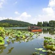 如何看待江苏文明城市只有无锡没被评上?
