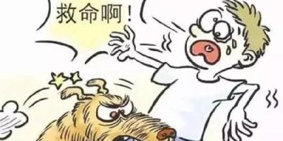 杭州一户养多条狗,九岁男孩被咬确诊狂犬病,对此该如何评价呢?