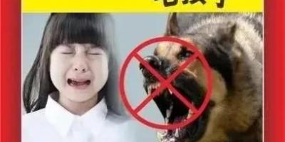 不让狗出门算不算虐待?