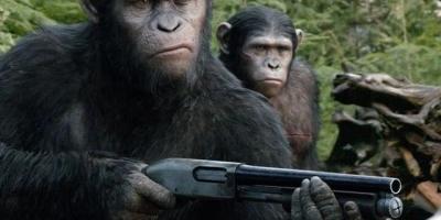 能和人类进行语言交流的动物有哪些?能懂人类说话的意图?