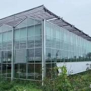 建一个四亩的温室大棚大概多少钱?要注意什么?