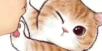 想养一只猫,有经验的猫友给个建议,掉毛少,异味小一点的,有何建议?
