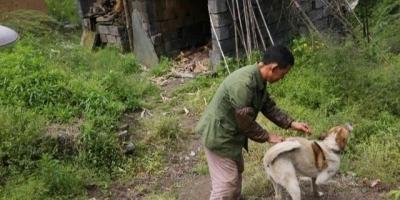 农村喂的土狗它平时靠什么记路?