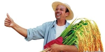 农村土地实行三权分置!什么是三权分置呢?对农民又有啥好处?