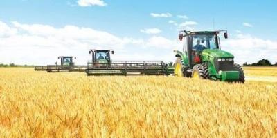 如果中国农村土地农场化你会不会去当农场主?