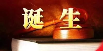同级法院的二审判决书和再审驳回裁定书哪个效力大?