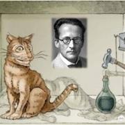 薛定谔的猫到底是什么逻辑?