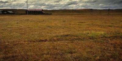 手上有两万多亩已经平整的土地,种什么农产品最好?