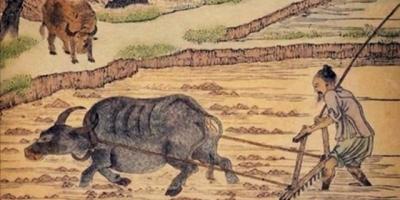 导致华夏文明在封建社会几千年中发展缓慢的根源是什么?