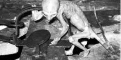 """墨西哥曾发现""""外星婴儿"""",这是真的吗?"""