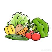 经常吃什么能提高免疫力?