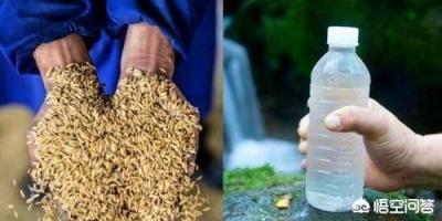 有人说一斤粮食的价格还不如一瓶矿泉水贵,对此你怎么看?