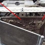 汽车前面发动机散热片上很多柳絮怎么清理?